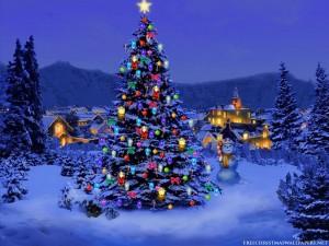 Christmas-Tree-Nature1024-226431